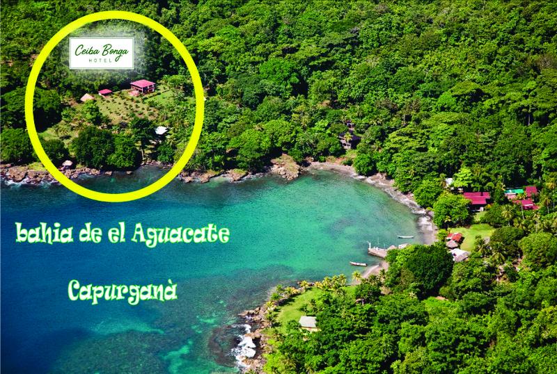 (Aguacate) Hotel Ceiba Bonga 2019